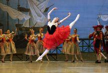 DON QUIXOTE / Don Quixote - Grigorovich Ballet Theatre