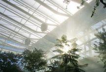 The new Botanical Garden - Padua, Italy
