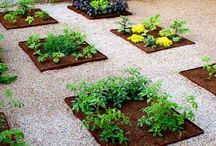 Jardinería- Gardens