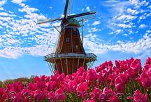 větrý mlýn