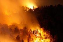 Mooie foto's brand-weer