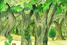 Illustrazioni naturalistiche