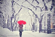pictures in the snow  / by Bethany Brindle