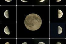 Jolie Luna / Moon / by Liz Kreusch