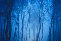 of snow paintings