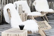 zim a terasa