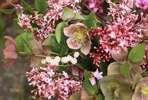 Flores y ramos