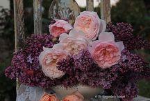 Flower crowns / For my flower aesthetic