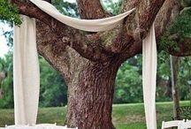 Wedding / Country wedding ideas