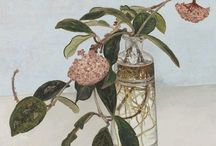 Άνθη καί Φυτά