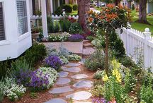Cottage garden front house