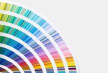 Colour Specialists