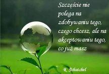 SENTENCJE...........