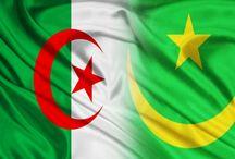 الجزائر وموريتانيا ضمن المناطق العالية المخاطر سياسيا | الحرية نت