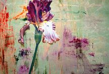 Painting Inspirations / by Mia Kar