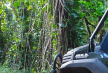 4X4 Jungle Adventure / Our two-hour highlight tour offers guests the opportunity to select from our premium 4x4 UTV vehicle fleet. Our vehicles have the capacity to accommodate 4-6 guests - making this tour perfect for families and large groups. Enjoy a relaxing scenic tour along this unique entry-level trail system; ascending from open, breathtaking viewpoints expanding over 3,000 acres of lush landscape and overlooking the Hule'ia River Valley.