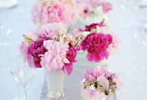Decor / by Lisa Collier