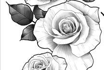 Brenda's drawings