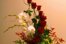dekoracje - natura