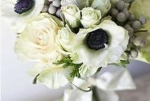 Wedding - idées deco & vrac / Idées en vrac, thème, déco, ambiance, couleurs