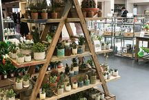 Harvey Nichols Popup Shop & Popup Mini Garden / We were delighted to have a popup shop and popup mini garden at Harvey Nichols across May 2018. If you missed out visit in store at Clifton Nurseries for more!