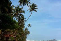 Srilanka travel