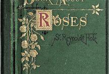 Róża / by basia.w w