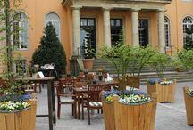 Umgestaltung des Schlossumfelds / Im Frühjahr 2014 werden die Außenanlagen des SportSchloss Velen umgestaltet. Sowohl der Schloss Innnehof, als auch der Schlosspark werden aufwendig umgearbeitet.