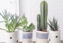Ceramics I would like to make