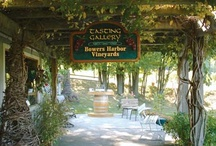 Throwback Thursday / by Bowers Harbor Vineyards