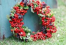 Wreaths / by ~Sandy Pritchard~