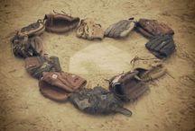 softball / by Shaila Haley Chapman