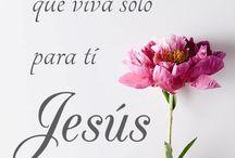 Tu Palabra Jesus