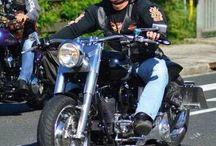 Harleysite #harleyrider #bikers #harleydavidson #harley #harleysite #fatboy