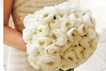 Wedding: Flowers