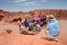 Valley of Fire / Nevada's very first state park! / by Pink Jeep® Tours
