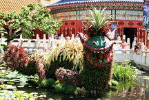Epcot - Flower and Garden festival