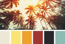 Color Palletes / by bl s