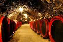 Kosice region Food & Wine / Festivals serve up taste sensations with a side of local music. For more inspiration, visit www.kosiceregion.com
