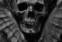 Bones / by Susan Shapouri