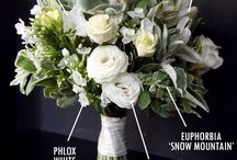 named flowers/greenery