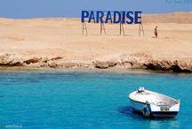 Paradise  / Everything what I like.