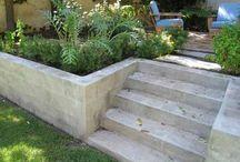 Trädgård / Växter utomhus