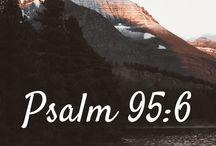 Bible Study - Psalms