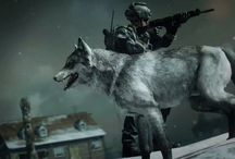 The Wolf Call of Duty Ghosts