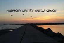 Harmony Life  by Aniela Simion