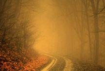 λαμπερή ομίχλη