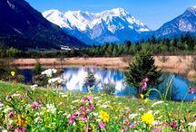Momente Frumoase / Creativitatea este o intrunire a unor oameni frumosi care impart aceeasi pasiune pentru lucrurile frumoase.
