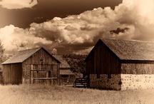 Barns / by Karyn Meeks