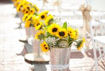 Event ideas / by Claire Martin